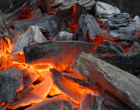 Hardwood bbq charcoal from russia.jpg
