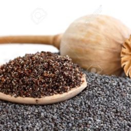 Wooden spoon with ground poppy seeds, pod, and whole seeds.