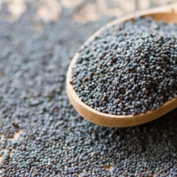 Wooden spoon with poppy seeds, close up