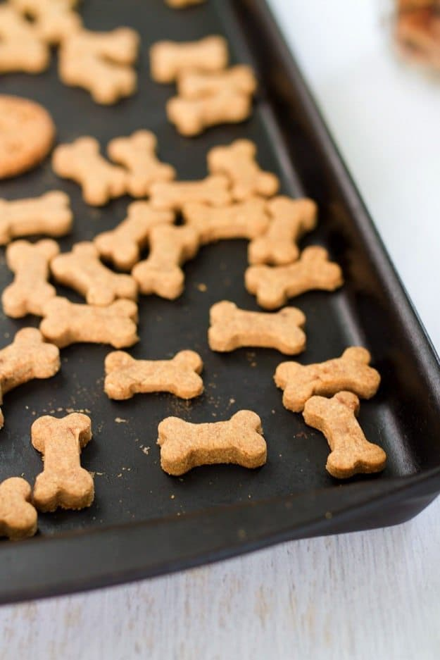 Homemade dog treats2.jpg