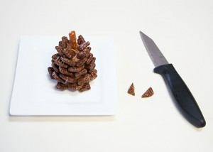 9-chocolate-pinecone-recipe-2