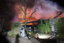 432660_germany_zoo_fire_35073 a6384b6354964ce89b5fb00d1933087b 676x451.jpg