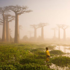 National geographic photo of the day internet favorites 2015 33__880.jpg