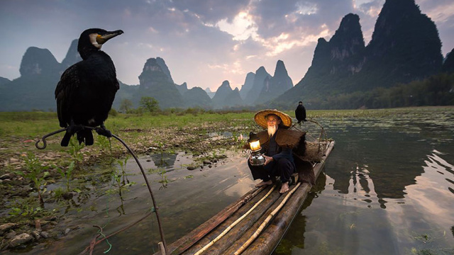 National geographic photo of the day internet favorites 2015__880.jpg