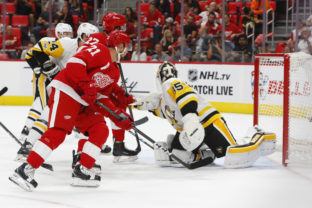 Penguins Red Wings Hockey