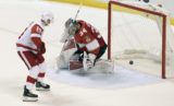 Gustav Nyquist, James Reimer, detroit, nhl