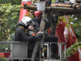 Germany Forest Standoff