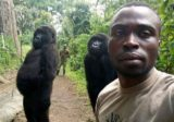 Virunga National Park, gorily
