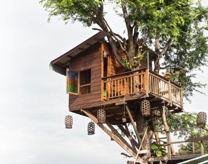 Little Tree House In Northern Thailand