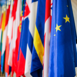 European Union member states flags one next to another