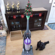 Protecting christmas tree from dogs cats pets 1 585a5c3dd4417__605.jpg