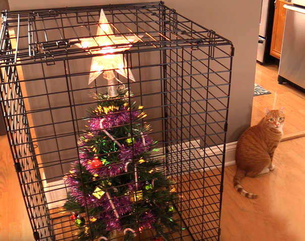 Protecting christmas tree from dogs cats pets 4 585a611c97b73__605.jpg
