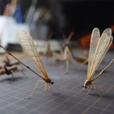 The japanese artist who creates life size insects exclusively from bamboo will impress you 59e08847b2340__880.jpg