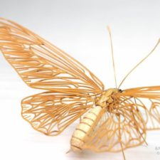 The japanese artist who creates life size insects exclusively from bamboo will impress you 59e089f8d6d68__880.jpg