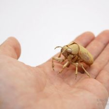 The japanese artist who creates life size insects exclusively from bamboo will impress you 59e08af1f14eb__880.jpg