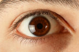 Brown male eyes